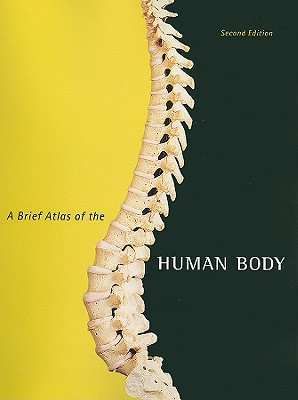 A Brief Atlas of the Human Body By Hutchinson, Matt/ Mallatt, Jon/ Marieb, Elaine Nicpon/ Wilhelm, Patricia Brady, Ph.D./ Hutchings, Ralph T. (PHT)